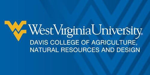 Image result for wvu logo davis college